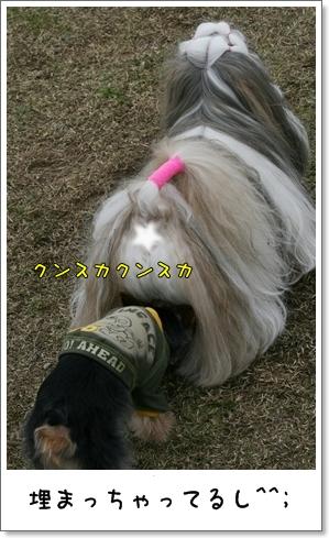 2009_0505_135934AA.jpg