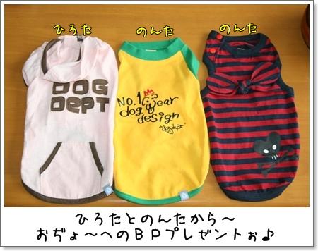 2009_0506_112457AA.jpg