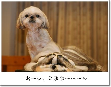 2009_0509_191554AA.jpg