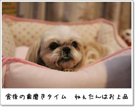 2009_0509_202341AA.jpg
