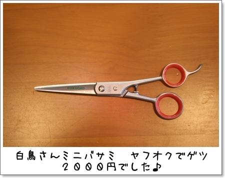 2009_0512_211429AA.jpg
