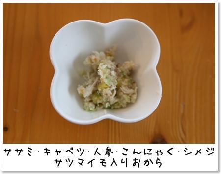 2009_0512_212436AA.jpg