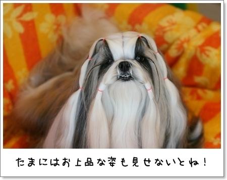 2009_0514_073822AA.jpg