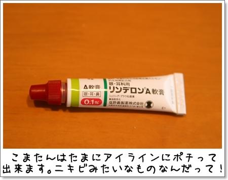 2009_0516_203953AA.jpg