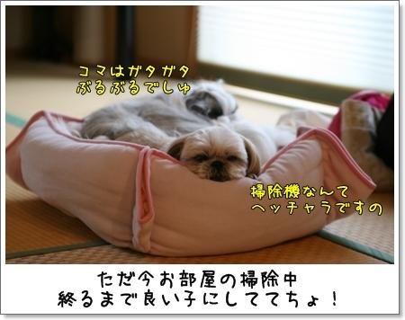 2009_0517_105358AA.jpg