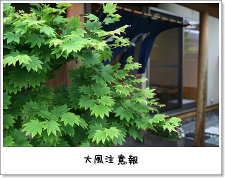 2009_0517_161713AA.jpg
