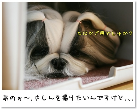 2009_0518_073531AA.jpg