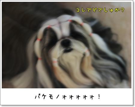 2009_0520_193444AA.jpg