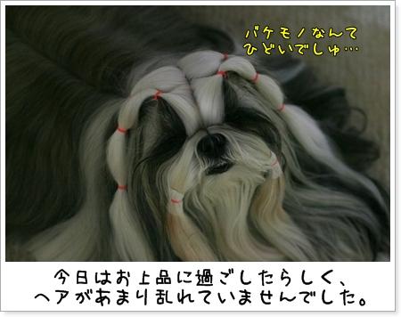2009_0520_193513AA.jpg