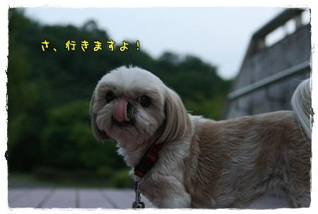 2009_0522_185034AA.jpg