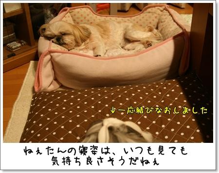 2009_0523_214620AA.jpg