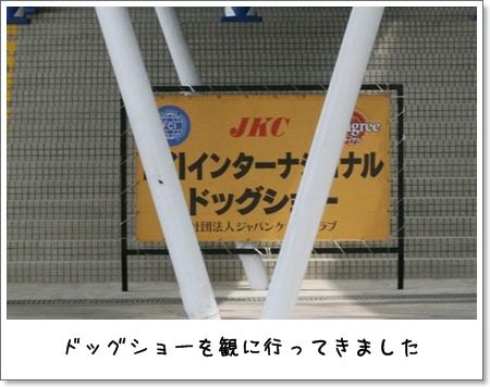 2009_0524_094600AA.jpg