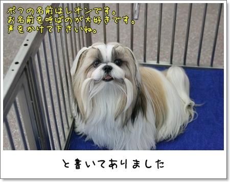 2009_0524_122310AA.jpg