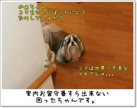 2009_0526_073501AA.jpg