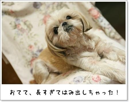 2009_0527_193510AA.jpg