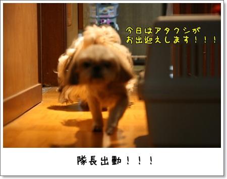 2009_0528_193732AA.jpg