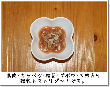 2009_0528_204052AA.jpg