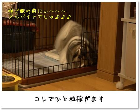 2009_0530_201531AB.jpg