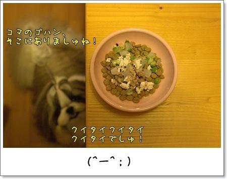 2009_0530_204823AB.jpg