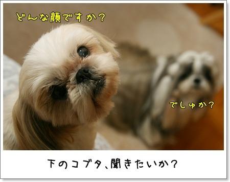 2009_0603_193856AA.jpg