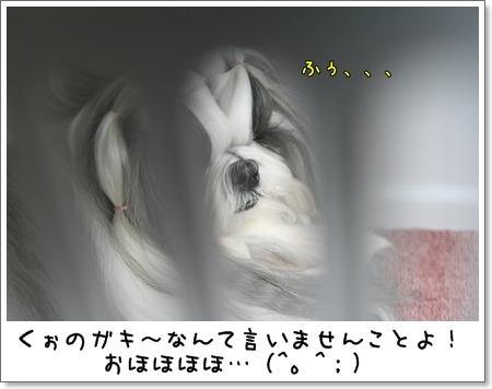 2009_0604_075351AA.jpg