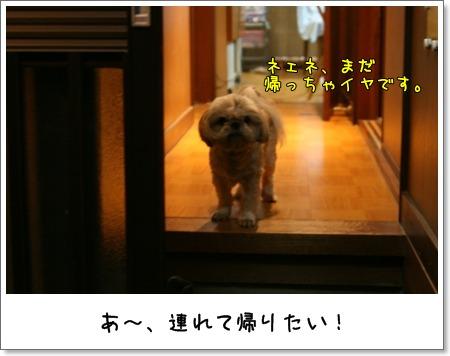 2009_0611_193924AA.jpg