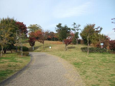聚楽園公園-公園