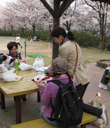 中の池公園-昼食6