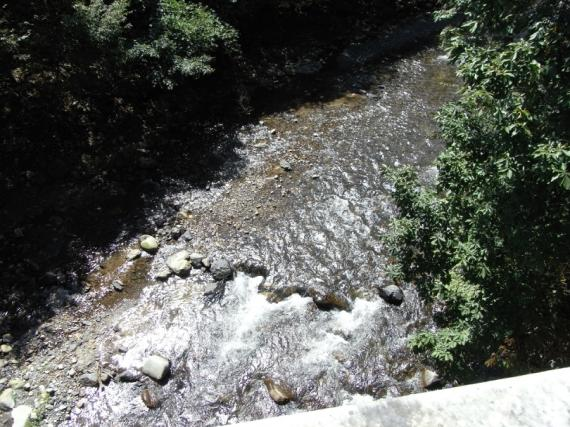橋の上から川
