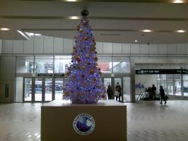札幌駅クリスマスツリー