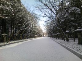 北海道神宮 第二鳥居2