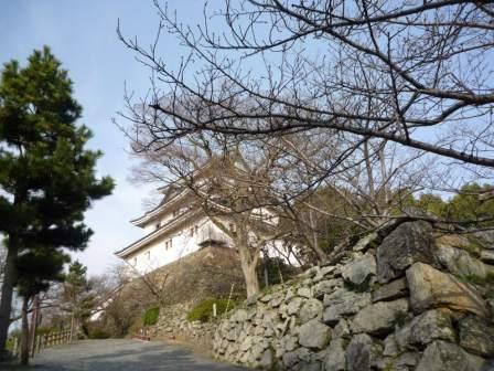 和歌山の岡電器サービスと岩出のパナットおかの軟水器と浄水器
