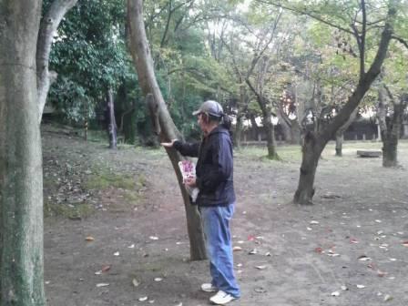 和歌山の岡電器サービスと岩出のパナットおかのリフォーム