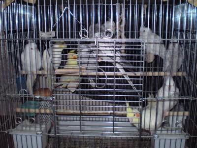2006.9月~ 205