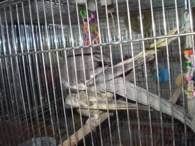 2006.9月~ 128