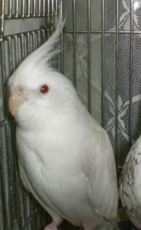 2006.9月~ 189
