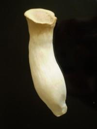 2006.9月~ 256
