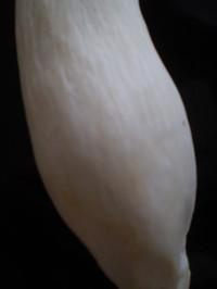 2006.9月~ 257