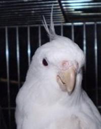 2006.9月~ 157