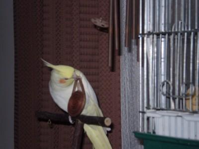 2006.9月~ 286