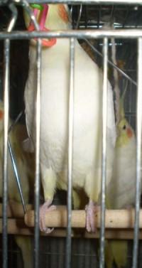 2006.9月~ 304