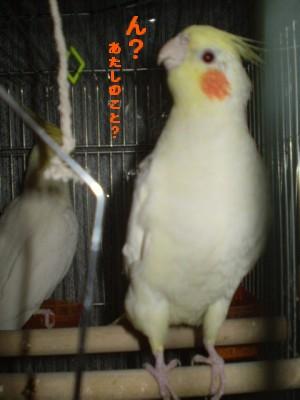 2006.9月~ 278