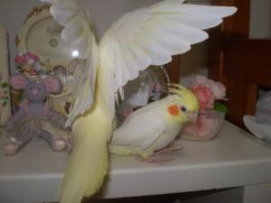 2006.9月~ 810