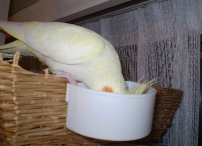 2006.9月~ 1355