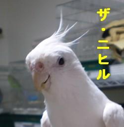 2006.9月~ 1564