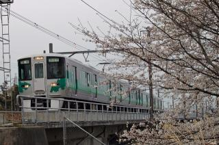 桜と愛環2000系