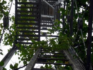 岡崎市木下町の火の見櫓