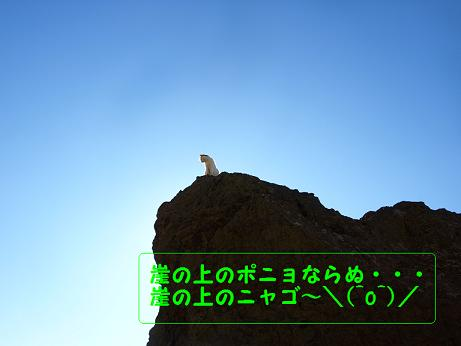 江ノ島オフ5