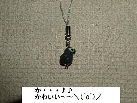 江ノ島オフ7