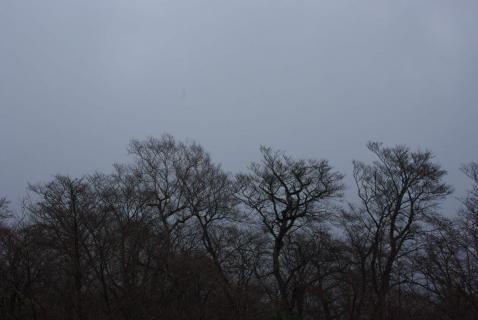 霧降高原3